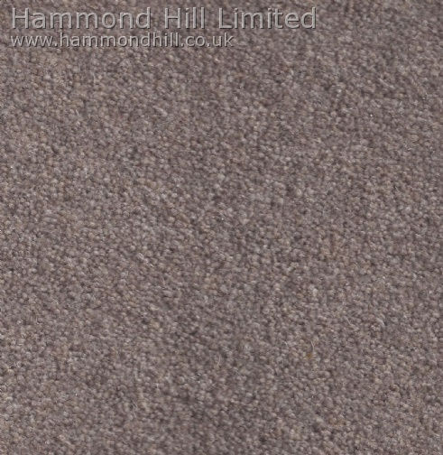 Cormar Carpet Co – Forest Hills Elite 1