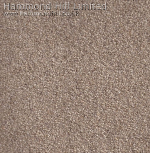 Cormar Carpet Co – Forest Hills Elite 13