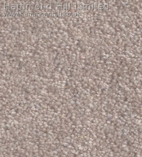 Cormar Carpet Co – Forest Hills Elite 8
