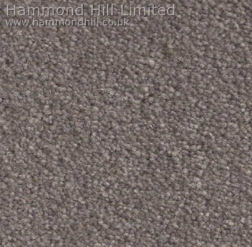 Cormar Carpet Co – Forest Hills Elite 5
