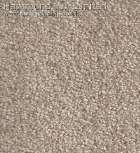 Cormar Carpet Co – Forest Hills Elite 3