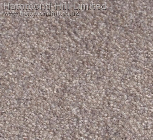 Cormar Carpet Co – Forest Hills Super 10