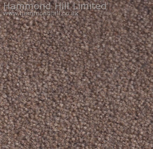 Cormar Carpet Co – Forest Hills Super 9