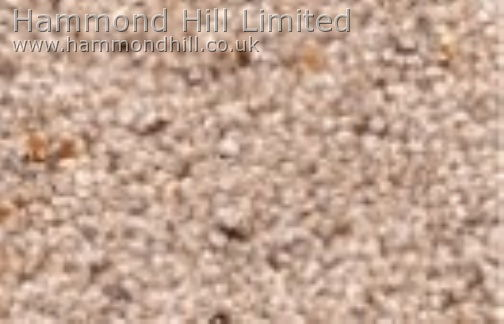 Cormar Carpet Co – Natural Berber Twist Deluxe 4