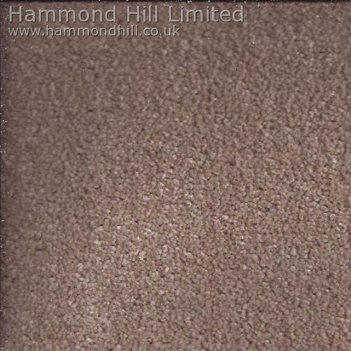 Cormar Carpet Co – Primo Ultra 13