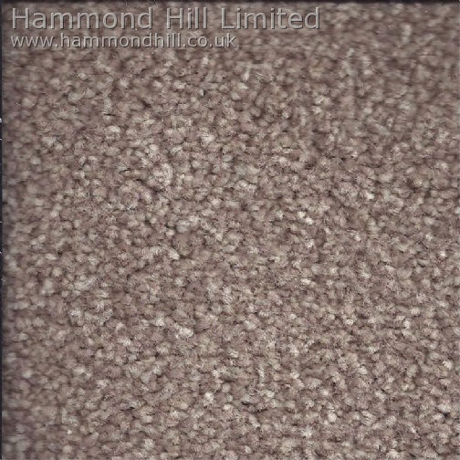 Cormar Primo Choice Elite Carpet 2