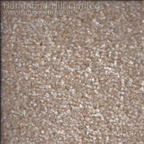 Cormar Carpet Co – Primo Choice Super 8