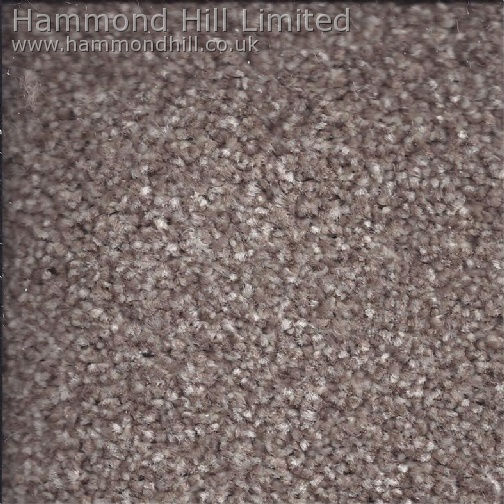 Cormar Primo Choice Elite Carpet 7