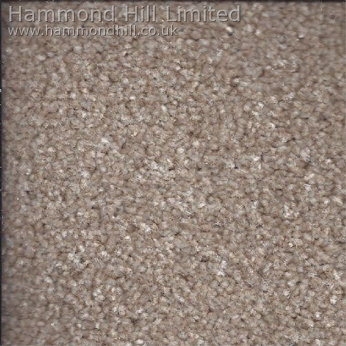 Cormar Carpet Co – Primo Choice Super 1