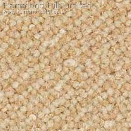 Westex Designer Point Carpet 9