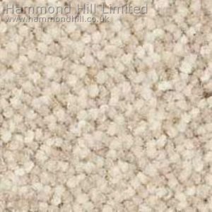Westex Designer Point Carpet