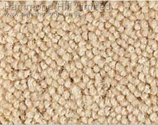 Westex Major Carpet