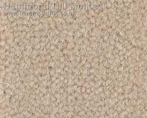Westex Prestige Velvet Carpet 5