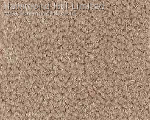 Westex Prestige Velvet Carpet 4