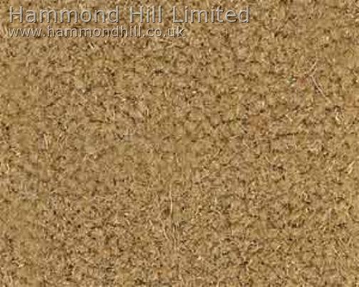 Westex Supreme Velvet Carpet 6