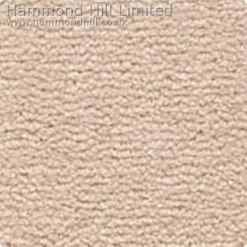 Westex Tundra Carpet 7