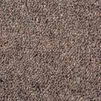 Westex Crest Carpet