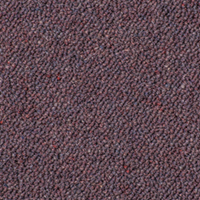 Westex Ultima Carpet