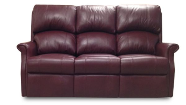 Celebrity Regent Sofa in Leather